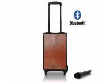 Parlante amplificado portable pure acoustics bluetooth USB SD con microfono